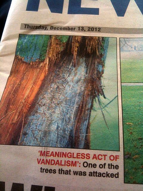 fail newspaper quoting a tree