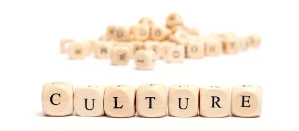 culture dices 6156
